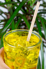 A glass of cold drink with passion fruit juice and ice cubes in a female hand on a background of green palm leaves