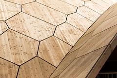 Holzpavilion
