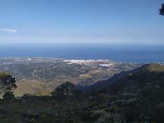 Sierra Bermeja, Estepona (Málaga)