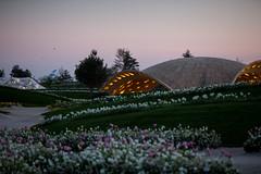 beleuchtete Pavilions