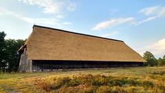 Schafstall Weseler Heide