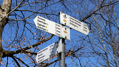 Südschwarzwald - Wegweiser bei Ebefingen