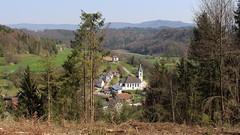 Südschwarzwald - Eberfingen mit Kirche St. Peter und Paul