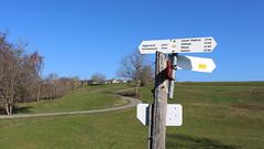 Südschwarzwald - Nöggenschwiel Wegweiser