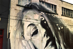 The Girl on The Wall
