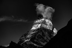Zebra Matterhorn B&W