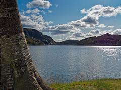 A day at the lake...
