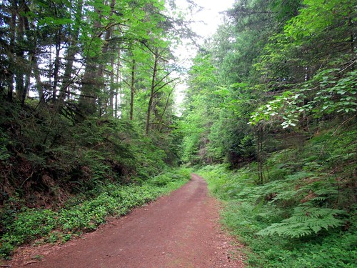 Duncan (BC) Canada Picture : Cowichan Valley Trail