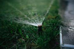 Watering grass mechanism closeup.