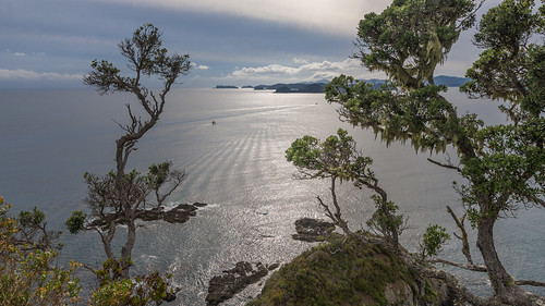 Bay of Island Viewpoint