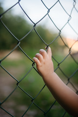 Childrens hand on a metal fence closeup.