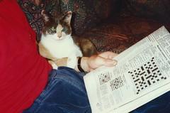 Daisy, Nov 1990