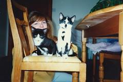 Kitten Bhaji and Bhuna, Nov 1990