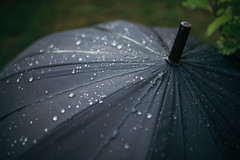 Closeup of black umbrella in rain