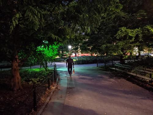 Washington Square Shadows