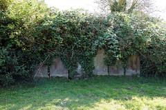 All Saint's Church Chillenden Kent England - overgrown relocated gravestones