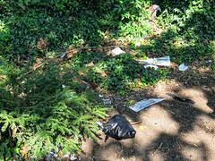 All Hallows Church Tottenham London England - churchyard dumped rubbish 1
