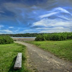 Belfair_landscape2