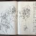 2006.01-2007.12[5] Shanghai Sanlintang Studio Sketchbooks 1to5 上海三林塘工作室 草稿速写簿第一至第五本-350