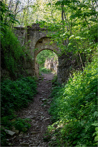 Hasenburg . Hasenburg Ruins