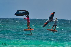 Wing Surfers