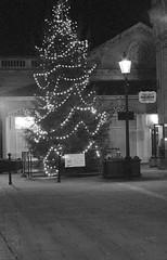 The Traverse Christmas Tree