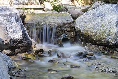 Freshwater 2