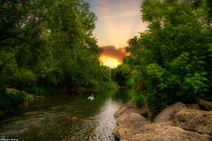 Brushy Creek and Nature