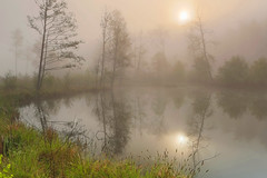 20e Biennale Nature FIAP a Russland
