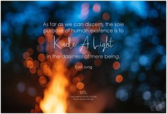 Carl Jung As far as we can discern, the sole purpose of human existence is to kindle a light in the darkness of mere being