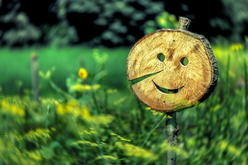 Mr Happy Face says Hello