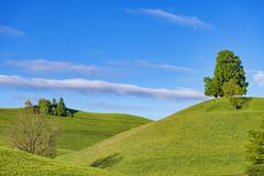 Pretty hill