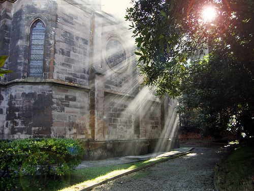 Purity Source. Comillas. JX3.
