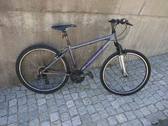 Stolen bike Diamant frame 7AL05545