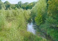 Le parc de Vilgénis (Massy)