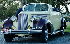 PACKARD 120 CONVERTIBLE COUPE (1939)