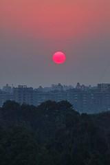 Cairo Afternoon Sun