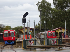 Trains at Woodville Station