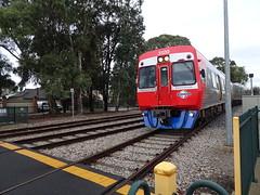 3120 on the Port/Grange Line