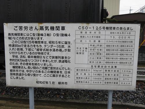 C50125 柳井駅駅南公園 (4)