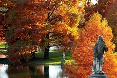 """Cincinnati - Spring Grove Cemetery & Arboretum """"Trumpeter In Autumn"""""""