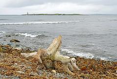 NS-08370 - Devils Island