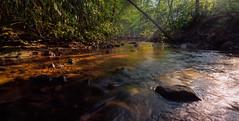 Conococheague Creek