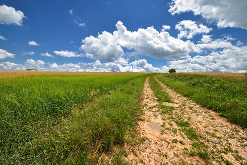 Le chemin vers les nuages