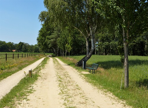 One of the many benches around Winterswijk