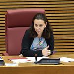 6-7-2020 Comissió especial d'estudi per a la reconstrucció