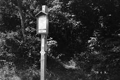 Mattabesset Trail Head