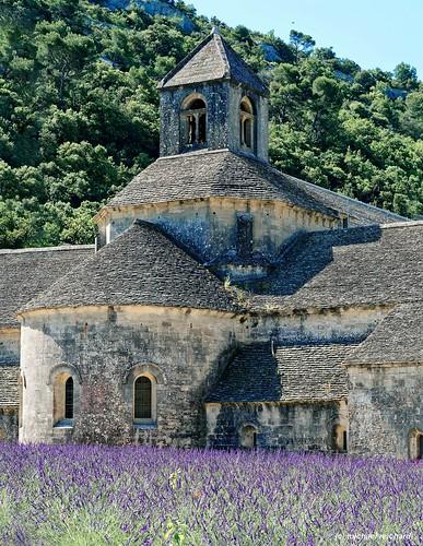 Abtei von Senanque /Abbeye de Senanque