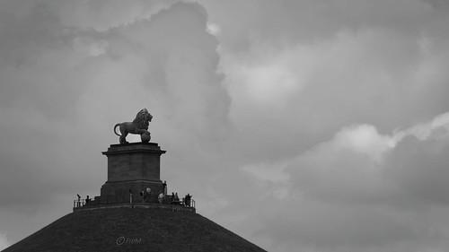 2020-06 Lion de Waterloo-06