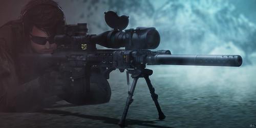 """Long Shot"" - SAC SR-25 APR Ver 2.00 Preview"